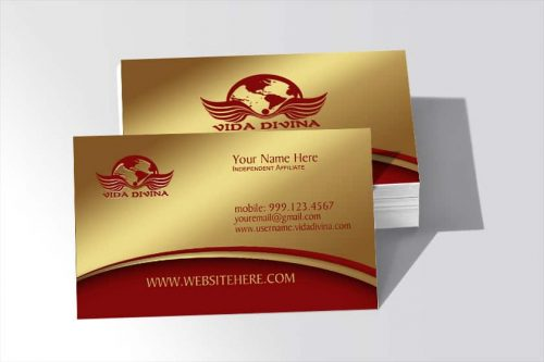 Vida Divina Business Card