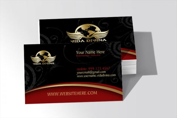 Vida Divina Business Cards