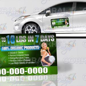 Lurra Life Car Magnets